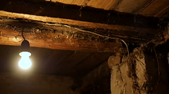 Lightbulb In the old basement of the house Stock Footage