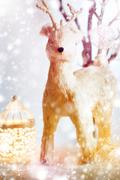 Christmas Background with Fairy Tale Deer Stock Photos