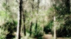 Woods POV flashback run long Arkistovideo