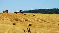 Farmers harvest grain from the field (farmer travel with tractor over field)  Stock Footage