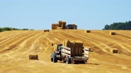 Farmers harvest grain from the field (farmers load haystacks on the tractor)  Stock Footage