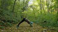 Young healthy woman exercising yoga in autumn forest. Stock Footage