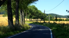 Road in the countryside between trees and fileds - sunny day Stock Footage