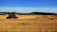 Farmers harvest grain from the field (farmer travel with tractor over the field) Stock Footage