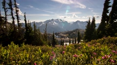 Cascade Mountains, alpine flowers, glaciers, mountain lake Stock Footage