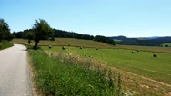 Field in countryside with haystack and road - forests in background - sunny day Stock Footage