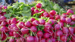 Fresh radishes with shoppers at the Union Square Greenmarket farmers market Stock Footage
