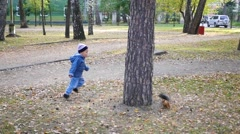 A little child plays with a squirrel in the Park Stock Footage