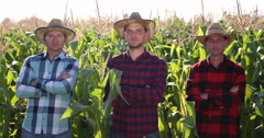 Confident Cultivator Agriculturist Men Looking Camera and Posing In Cornfield Stock Footage