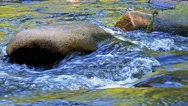 Closeup of river between stones in forest - detail of flowing water Stock Footage