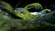 Closeup of river between stones in forest  Stock Footage