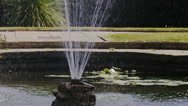 Water fountain in a pond spraying upwards, in slow motion Stock Footage