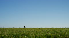Wide angle shot of somebody riding their bike in the countryside - space for tex Stock Footage