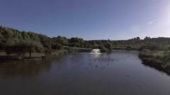 Park lake with swans and ducks aerial shot Stock Footage