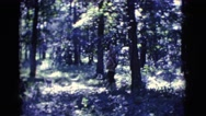 1961: a forest area is seen with snow CLARKSDALE, ARIZONA Stock Footage