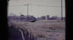 1964: dried grass on the yard of a home with farns all around on a sunny day. Stock Footage
