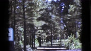 1964: a forest area is seen COTTONWOOD, ARIZONA Stock Footage