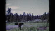 1964: a travel around a small town and the countryside on a typical day Stock Footage
