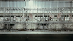 Keeping of rabbits in cages on the farm Stock Footage