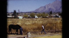 1968: a horse is seen with a rider CLARKSDALE, ARIZONA Stock Footage
