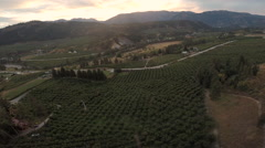 Aerial: Sunset Over Rural Valley and Orchards, Rivers and Roads Stock Footage