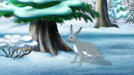 Gray Bunny in Winter Stock Footage