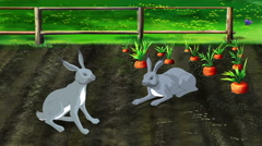 Hares on Carrot Garden Stock Footage