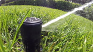 Automatic watering the lawn closeup Stock Footage