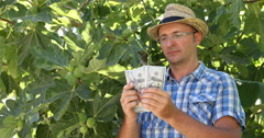 Rich Peasant Farmer Counting US Dollars Money After Selling Figs Fruits Farming Stock Footage