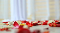 Red and white rose petals on white wood floor Stock Footage