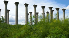 Original Capitol Columns at the National Arboretum Stock Footage