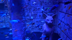 Aquarium with fish decorated in Egyptian style Stock Footage