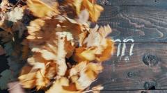 Golden Autumn - saver Stock Footage
