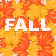 Red and Yellow Fall Leaves Pattern Piirros