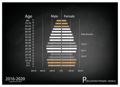 2016-2020 Population Pyramids Graphs with 4 Generation Stock Illustration
