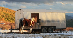 Sheep herder camp horse by trailer winter mountain DCI 4K Stock Footage