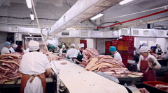 Meat Product Manufacturing. Butchering Room. Big Table in the Middle. Heaps of Stock Footage