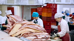 Meat Product Manufacturing. Butchering Room. Female Workers in White Uniform Stock Footage