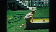 1958: a child is seen dipping in a pool AMES, IOWA Stock Footage
