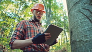 Forestry worker with digital tablet checking trees Stock Footage