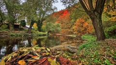 Autumn timelapse with river Stock Footage
