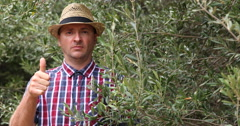 Confident Farm Worker Man Showing Thumb Up Sign at Camera in Olive Plantation Stock Footage