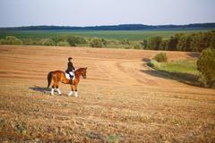 Woman riding a horse. Equestrian sportswoman jockey Stock Photos