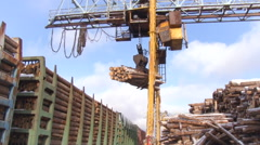 Pulp and Paper Plant. Lifting Mechanism Unloading Railcars, Taking Bunch of Stock Footage