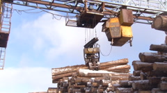 Pulp and Paper Plant. Lifting Mechanism Adding a Bunch of Logs to the Stack on Stock Footage