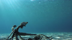 Ship's old anchor and chain line under sea in Greece Stock Footage