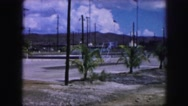 1958: panning around palm trees AMES, IOWA Stock Footage