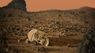 Alien Skull on Mars Stock Footage