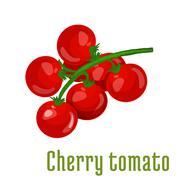 Cherry tomato vegetable icon Stock Illustration