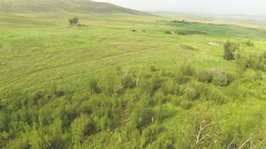 Aerial view of in the steppe with road of Kazakhstan Stock Footage